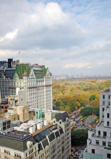 plaza_hotel_and_central_park_6355929